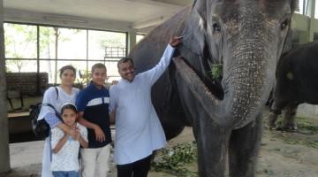 Prashad_Joshi_Animal_Adoption_Pune