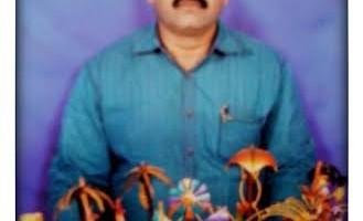 Vallabhaneni_Satya_Sai_Babu