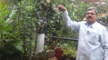 Nandkumar_Dhumal_Pune_Apple_Garden