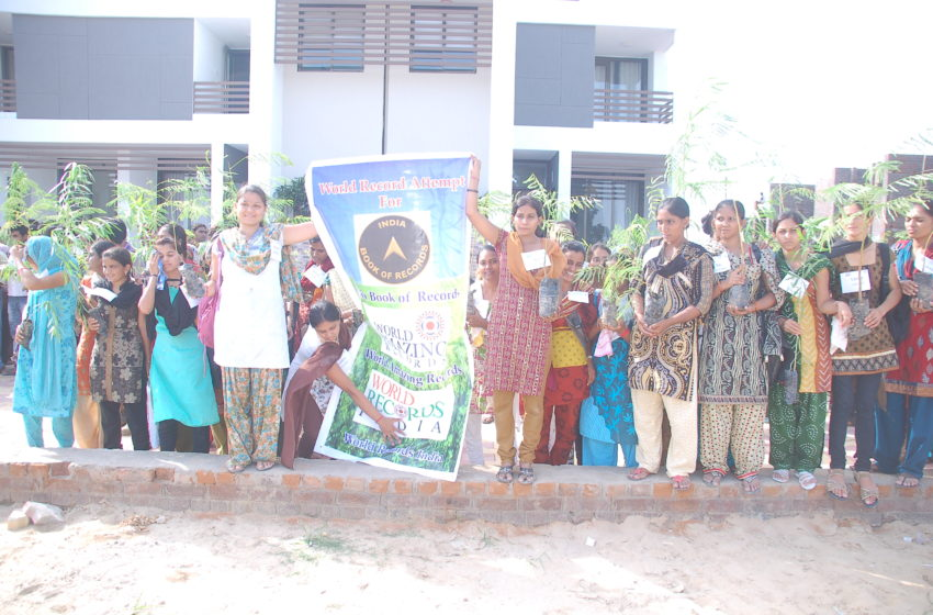 MOST TREE PLANTATION IN 24 HOURS IN MULTIPLE LOCATIONS