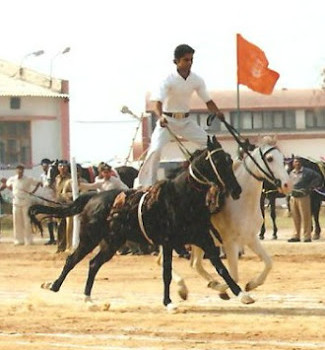 STANDING HORSE RIDING WITH TWO HORSES