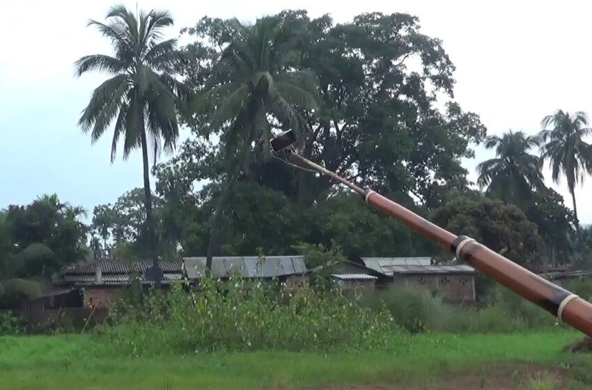 LONGEST BAMBOO SELFIE STICK