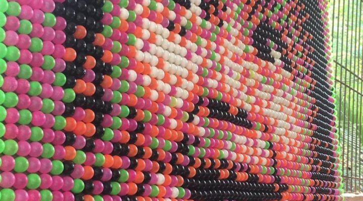 WORLD'S LARGEST MOSAIC PORTRAIT USING PLASTIC BALL